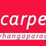 Carpetlink Whangaparaoa